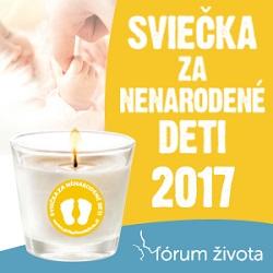 FZ Sviecka 2017